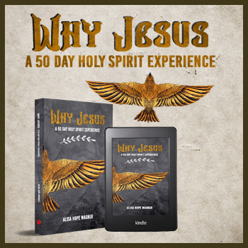 Why Jesus: A 50 Day Holy Spirit Experience